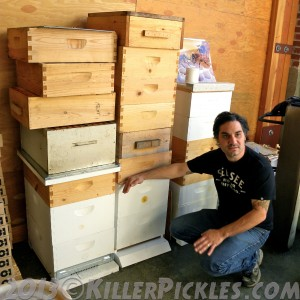 Damian Magista, owner of Bee Local.
